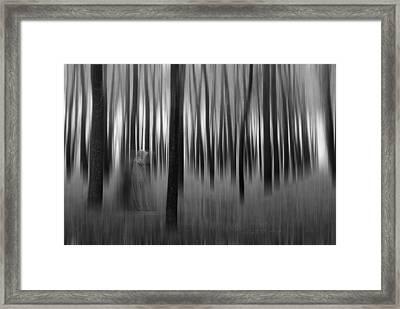 Dreams-2 Framed Print by Okan YILMAZ