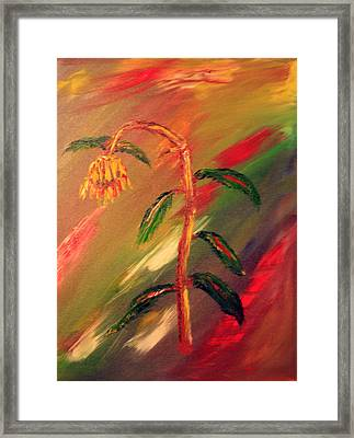 Dregs Of Summer Framed Print by James Bryron Love