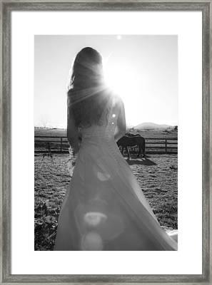 Dress 30 Framed Print by Betsy C Knapp