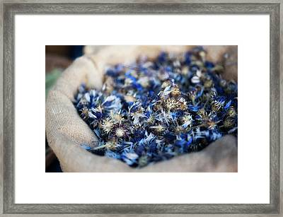 Dried Blue Flowers In Burlap Bag Framed Print by Alexandre Fundone