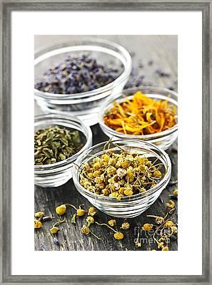 Dried Medicinal Herbs Framed Print by Elena Elisseeva