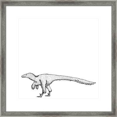 Dromaeosauroides - Dinosaur Framed Print by Karl Addison