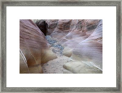 Dry Creek Bed 3 Framed Print by Bob Christopher
