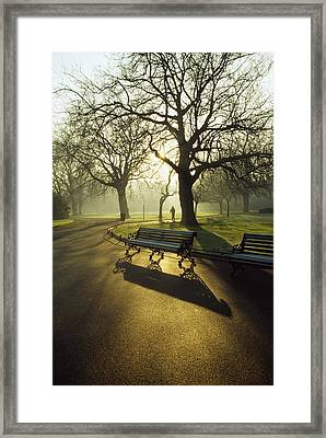 Dublin - Parks, St. Stephens Green Framed Print by The Irish Image Collection
