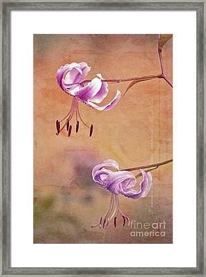 Duet 05c Framed Print by Aimelle