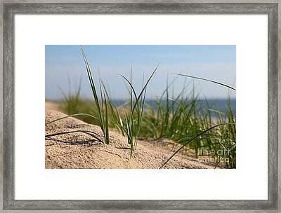 Dune Framed Print by Holger Ostwald