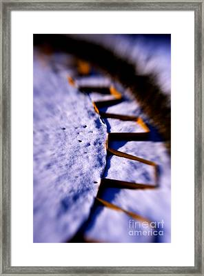 Dusty Snow And Geometry Third View Framed Print by Anca Jugarean