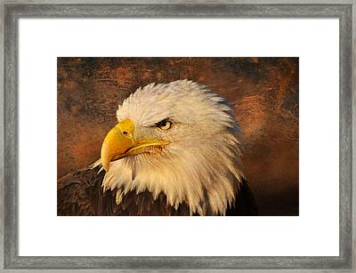 Eagle 47 Framed Print by Marty Koch