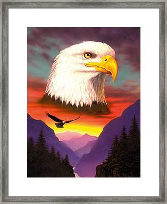 Eagle Framed Print by MGL Studio - Chris Hiett