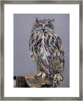 Eagle Owl Framed Print by Tanya Patey