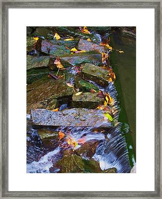 Early Autumn 2 Framed Print by Todd Sherlock