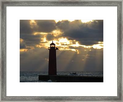 Early Morning Rays Framed Print by Kay Novy