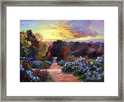 Early Summer Evening Framed Print by David Lloyd Glover