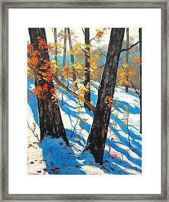 Early Winter Framed Print by Graham Gercken