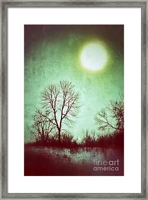 Eerie Landscape Framed Print by Jill Battaglia