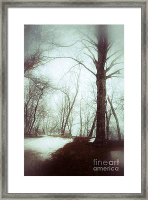 Eerie Winter Woods Framed Print by Jill Battaglia