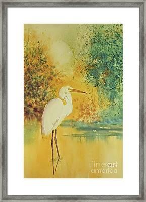 Egret Framed Print by Diana  Tyson