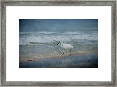 Egret Framed Print by Sandy Keeton