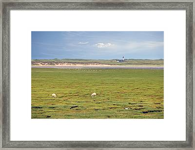 elbow - Sylt Framed Print by Joana Kruse