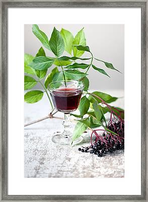 Elderberries 05 Framed Print by Nailia Schwarz