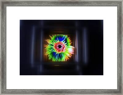 Electric Flower Framed Print by Marcia Lee Jones