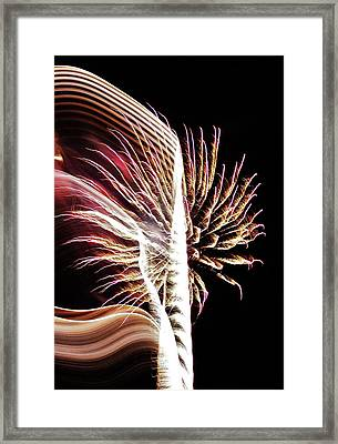 Electric Framed Print by Paulette Thomas