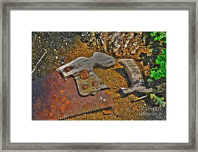 Elements Framed Print by Cheryl Young