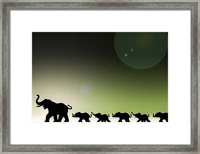 Elephants In A Row Framed Print by Chris Knorr