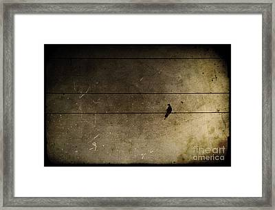 Emotional Distance Framed Print by Andrew Paranavitana