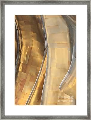 Emp Fools Gold Framed Print by Chris Dutton