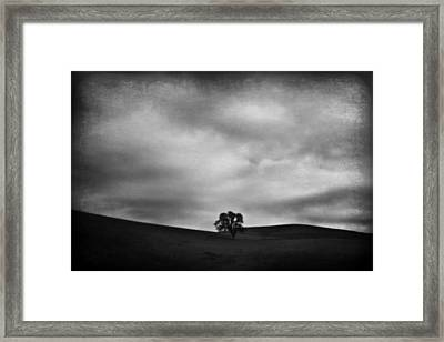 Emptiness Framed Print by Laurie Search