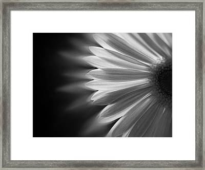 Enchanting Framed Print by Ivelina G