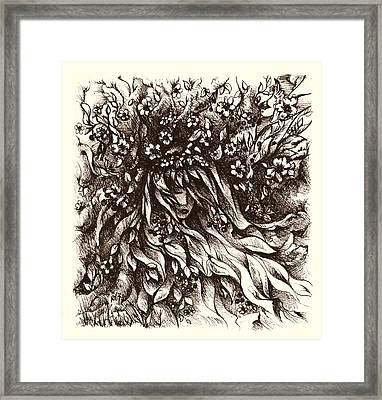 Enchantment Framed Print by Rachel Christine Nowicki