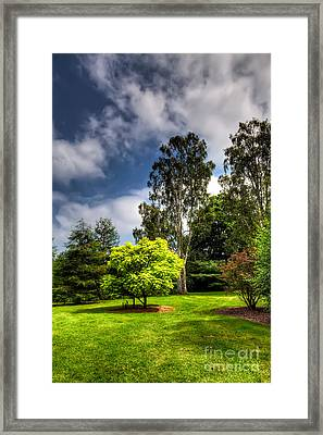 English Countryside  Framed Print by Adrian Evans
