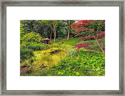 English Garden  Framed Print by Adrian Evans
