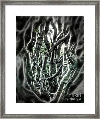 Entangled Worlds Framed Print by Danuta Bennett