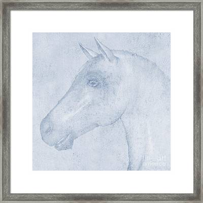 Equus Framed Print by John Edwards