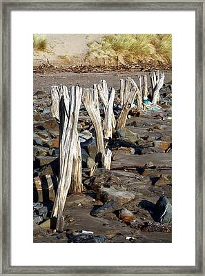 Eroded Wooden Fence Framed Print by Dr Keith Wheeler