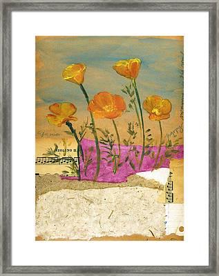 Eschscholzia Framed Print by Sorana Tarmu
