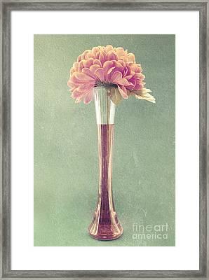 Estillo Vase - S01t04 Framed Print by Variance Collections