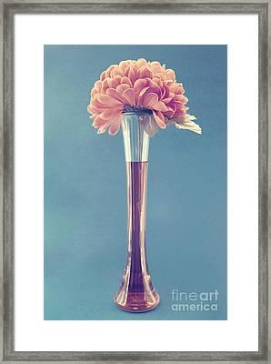 Estillo Vase - S01v3f Framed Print by Variance Collections