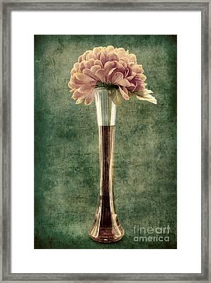 Estillo Vase - S02et01 Framed Print by Variance Collections