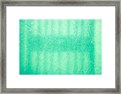 Etched Glass Framed Print by Tom Gowanlock