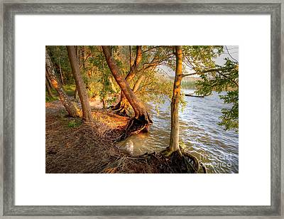 Evening At The Lake Framed Print by Heiko Koehrer-Wagner