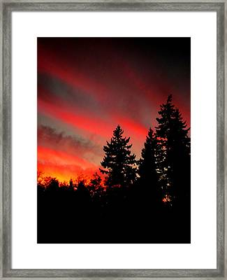 Evening Glow Framed Print by Kevin D Davis