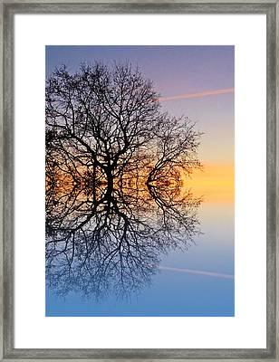 Evening Sky Trails Framed Print by Sharon Lisa Clarke