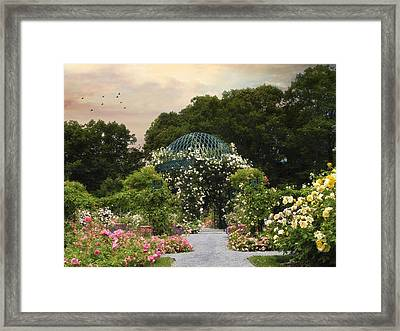 Exhibit Of Roses Framed Print by Jessica Jenney
