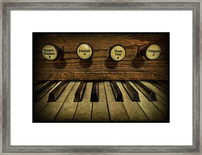 Facing The Music Framed Print by Evelina Kremsdorf