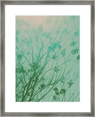Fading Light Framed Print by Bethany Fulford