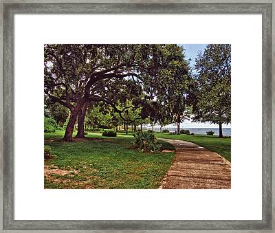 Fairhope Lower Park 2 Framed Print by Michael Thomas